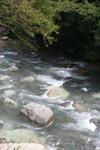 川の風景 その4.jpg